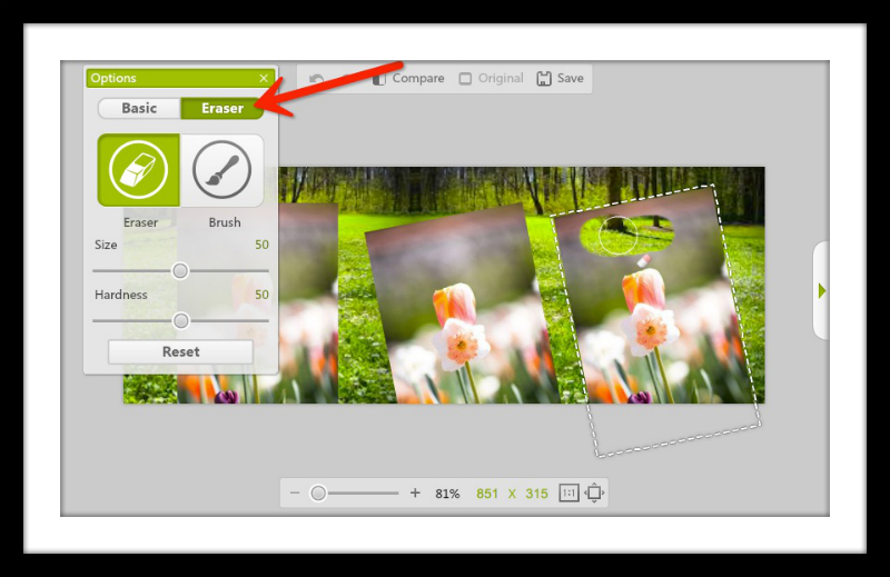 Spring Timeline Cover Photo and eraser for Photo Montage