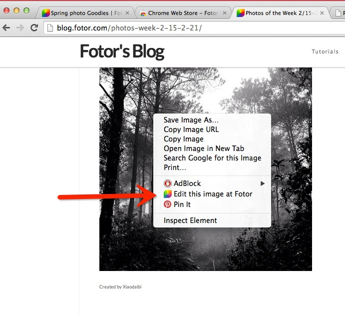 Right click Fotor Chrome Extension sidebar