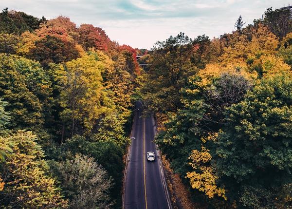 Colourful Roads in Canada in the Fall