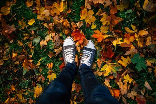 Teenage legs in sneakers in autumn leaves