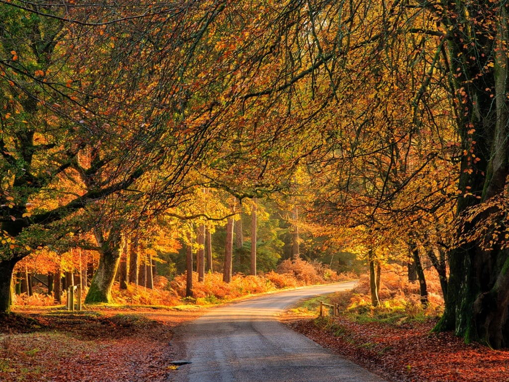 autumn expert tips travel photographs-1024x768-2