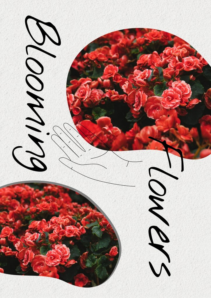24. Blooming flowers template