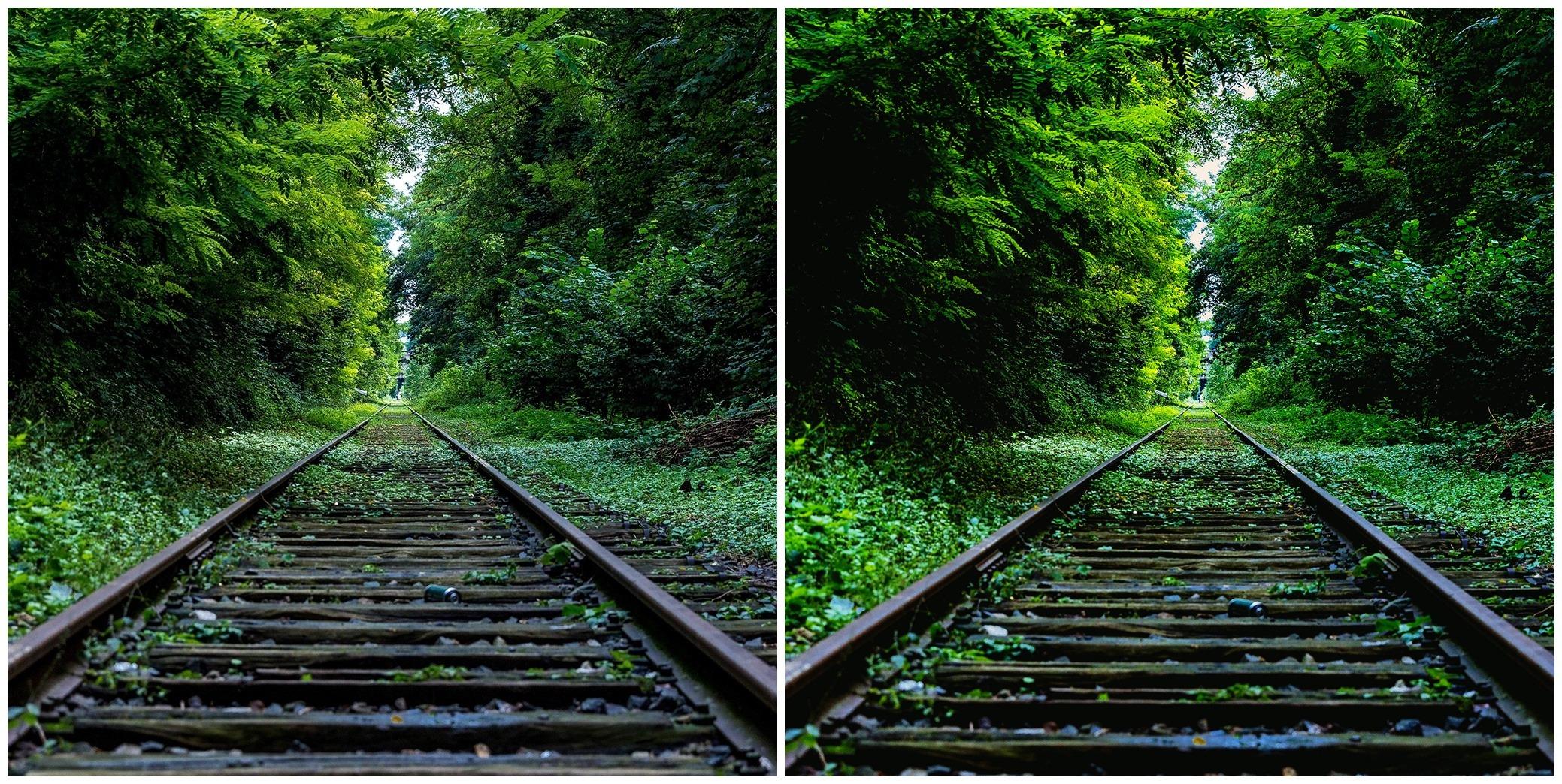 Nature photo effect