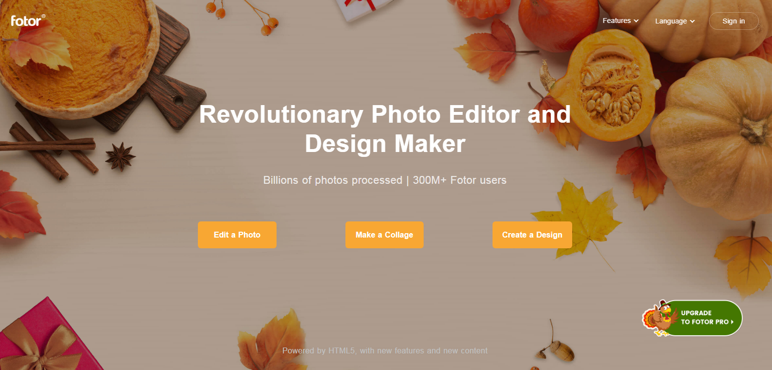 all-in-one graphic design and photo editing tool