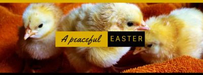 Peaceful Easter