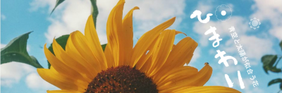 Reach The Top With Fotors Sunflower Twitter Cover Designer